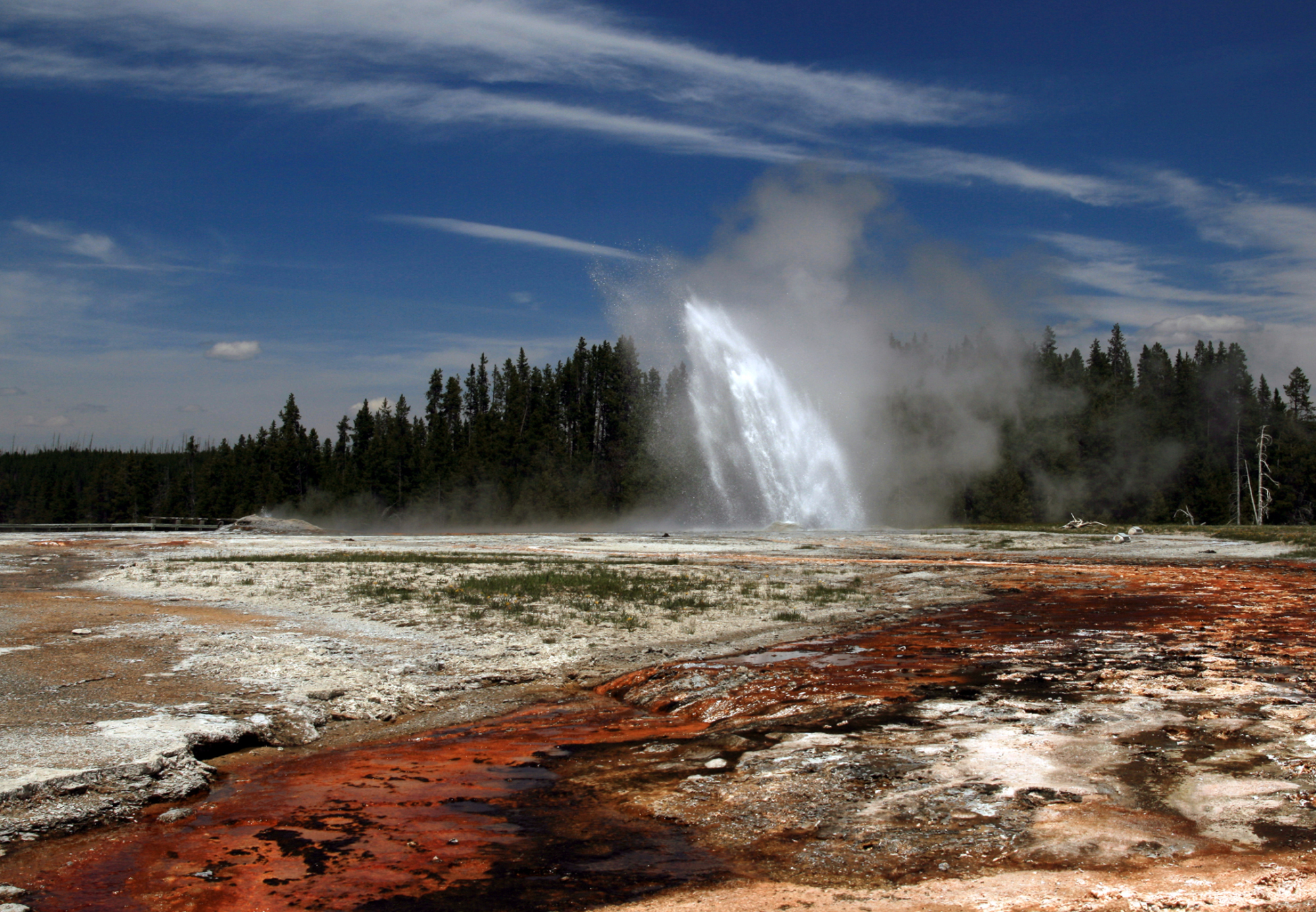Going To Yellowstone?  Get This App
